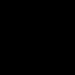 Gold Brooch - yellow gold - 1980